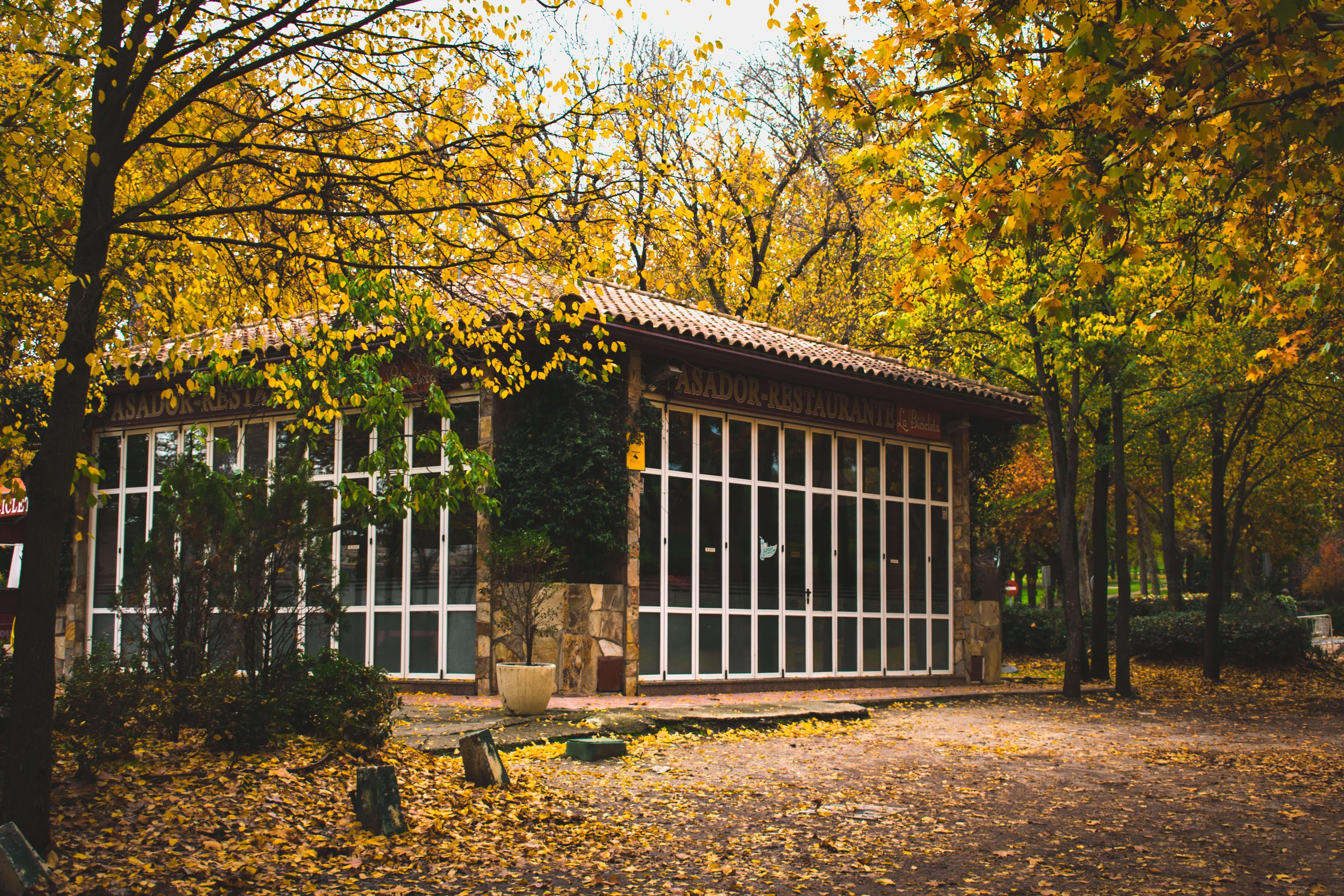 madrid guide to the casa de campo park