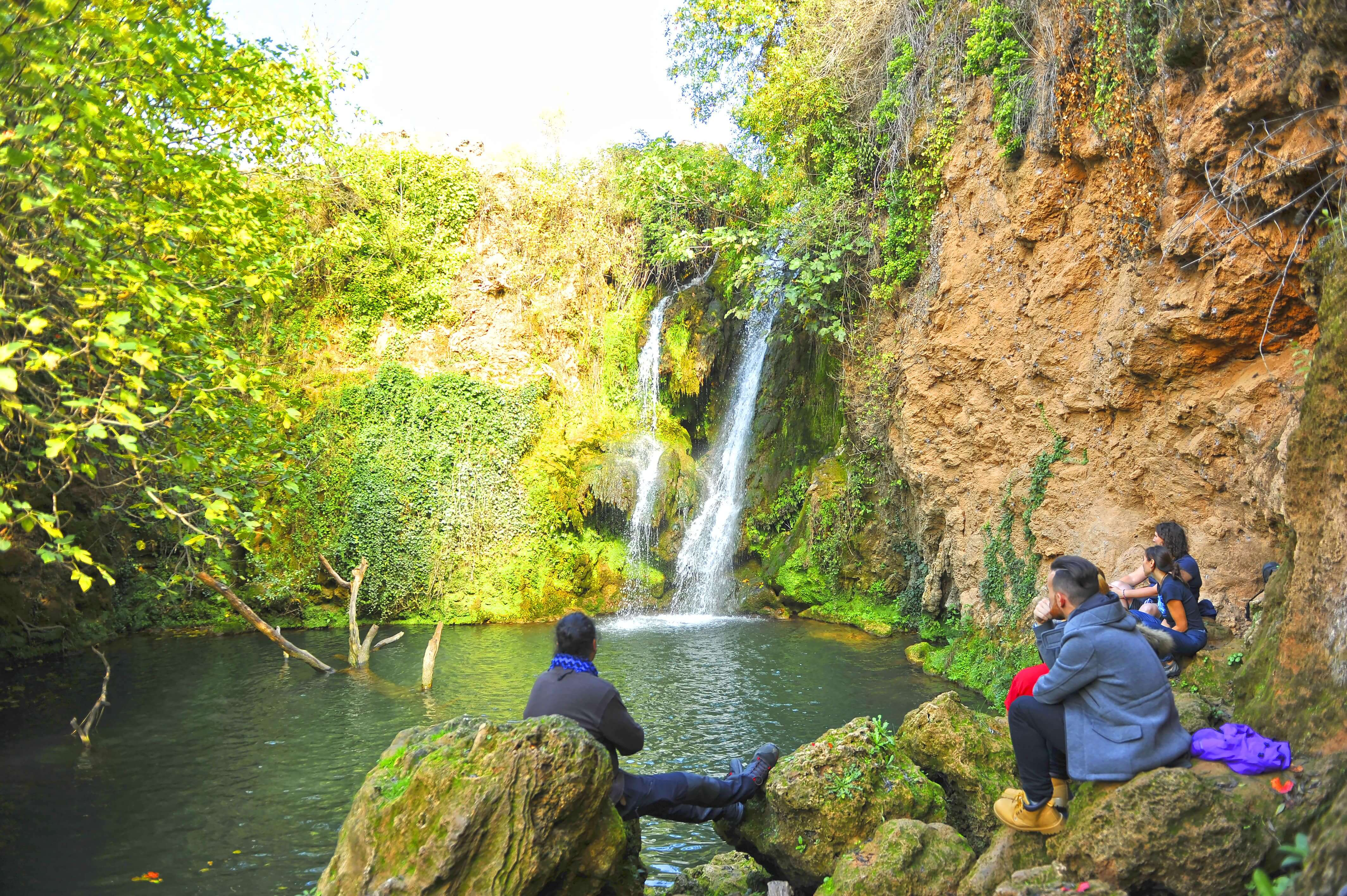 nature in the sierra norte of sevilla