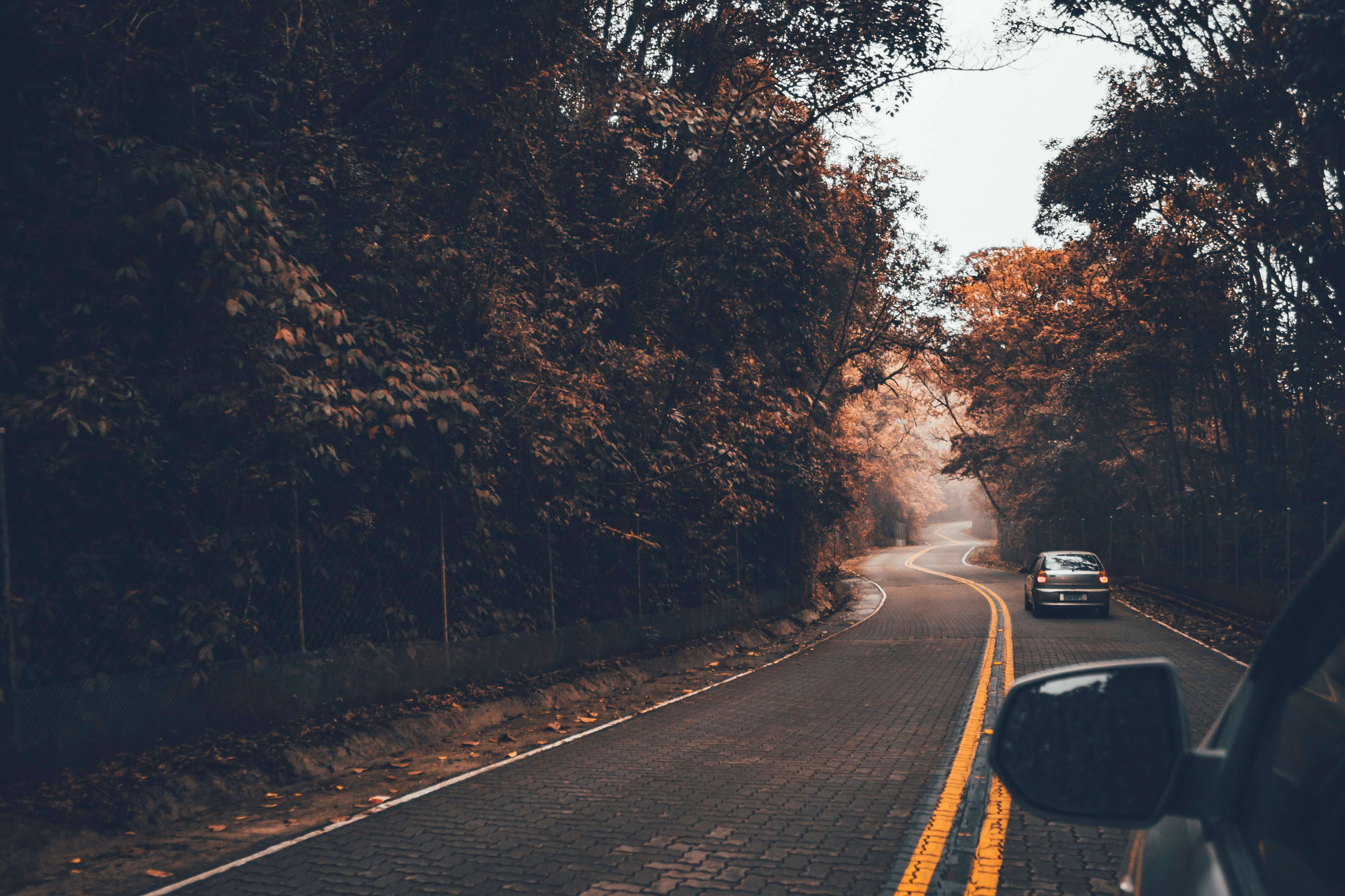 third party car insurance might include travel support