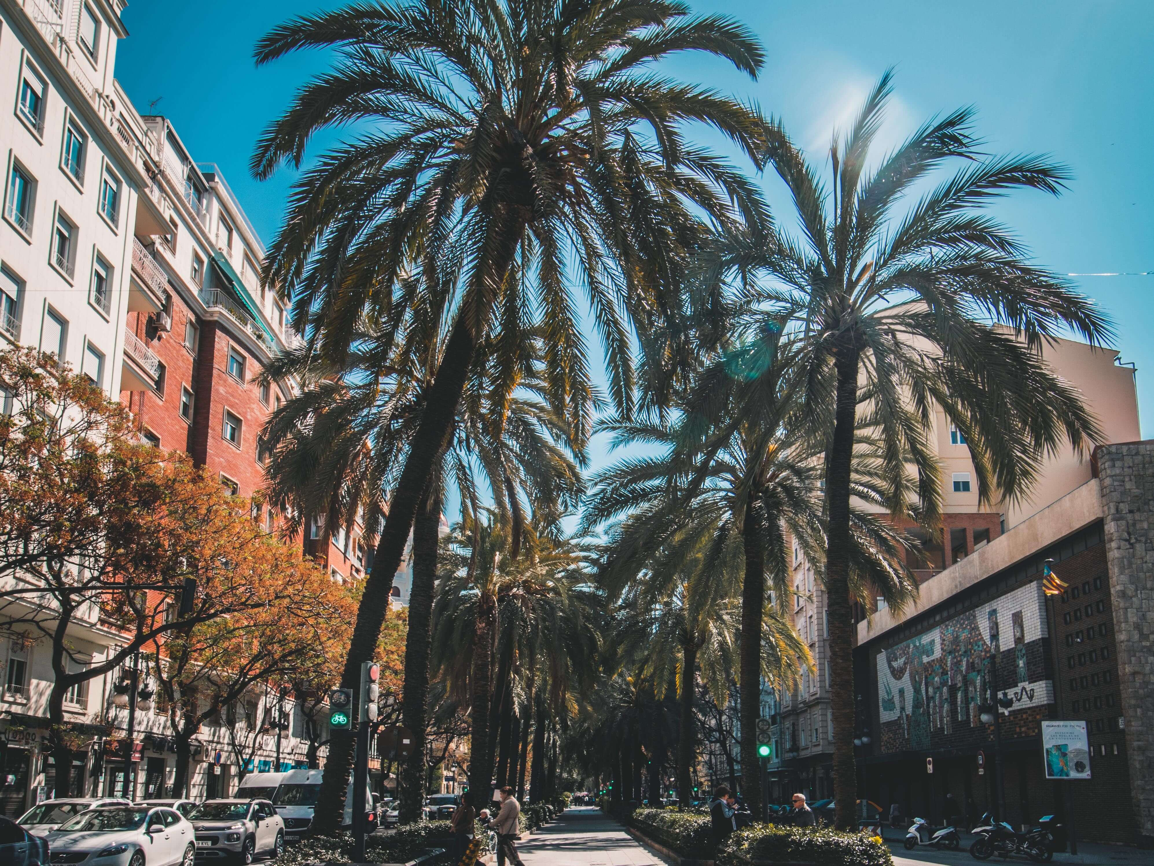 the pros and cons of living in Valencia, Spain include the sunny weather